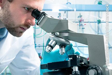 Bild Laborwerte