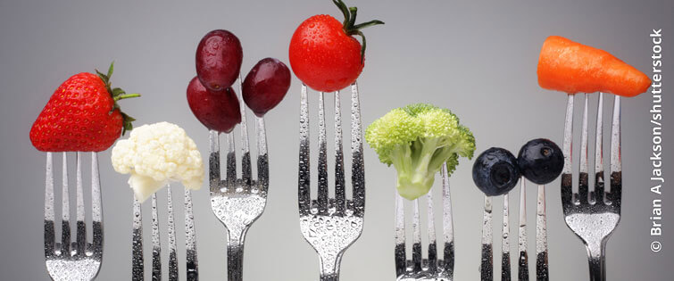 Schwerpunkt Ernährung